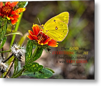 Cloudless Sulphur Butterfly And Scripture Metal Print by Sandi OReilly