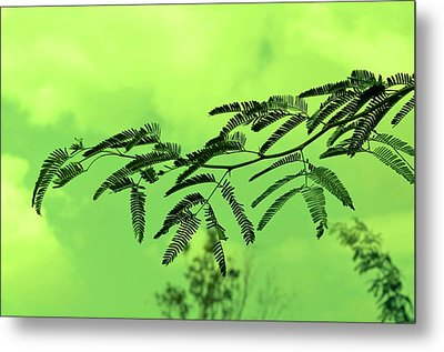 Cloudy Green Nature Metal Print by Deepti Chahar