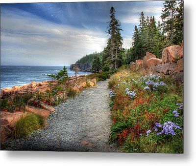 Coastal Meandering Metal Print by Lori Deiter