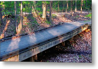 Cold Summer Metal Print by Sakna T