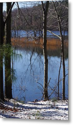 Cold Winter Day Metal Print by Tannis  Baldwin