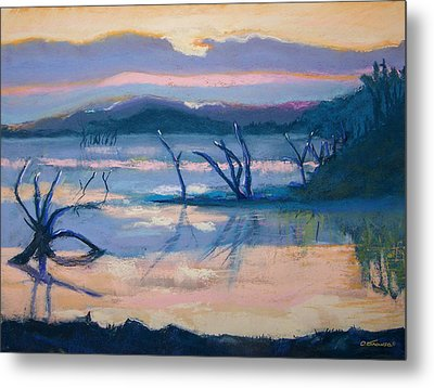Coletta Lake Metal Print by Charles Krause