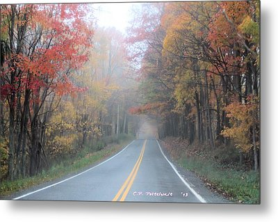 Color In The Country Metal Print by Carolyn Postelwait