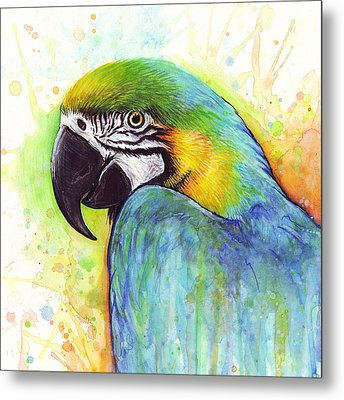 Macaw Watercolor Metal Print by Olga Shvartsur