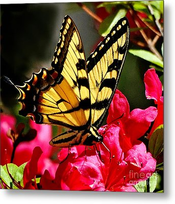 Colorful Flying Garden Metal Print by Nava Thompson