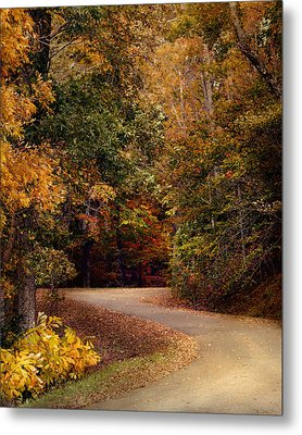 Colorful Journey - Autumn Scene Metal Print by Jai Johnson