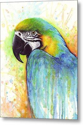 Macaw Painting Metal Print by Olga Shvartsur