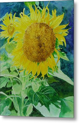 Colorful Sunflowers Watercolor Original Sunflower Art Metal Print by K Joann Russell