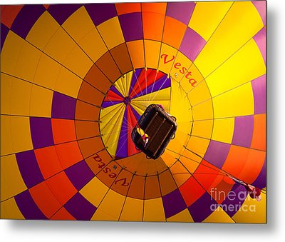 Colorful Underbelly Metal Print by Inge Johnsson