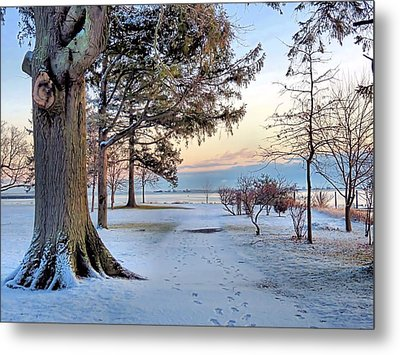 Colors Of Morning Metal Print by Janice Drew