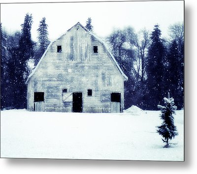 Come In Outa The Cold Metal Print by Julie Hamilton