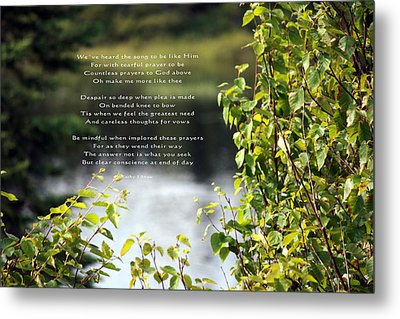 Concience Metal Print by Kathy J Snow