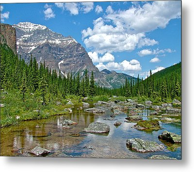 Consolation Lake In Banff Np-alberta Metal Print by Ruth Hager