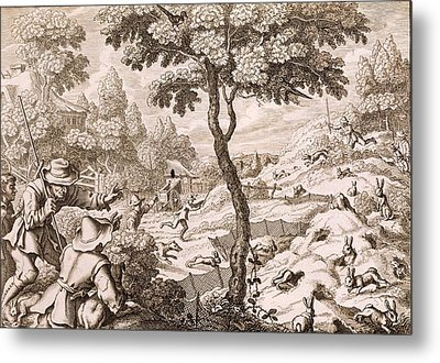Cony Catching, Engraved By Wenceslaus Metal Print by Francis Barlow