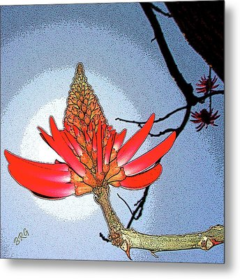 Coral Tree Metal Print by Ben and Raisa Gertsberg