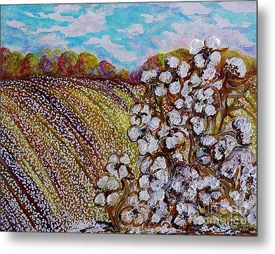 Cotton Fields In Autumn Metal Print by Eloise Schneider