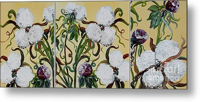 Cotton Triptych Metal Print by Eloise Schneider