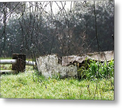 Country Diamonds Metal Print by Pamela Patch