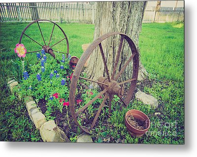 Country Garden Metal Print by Will Cardoso