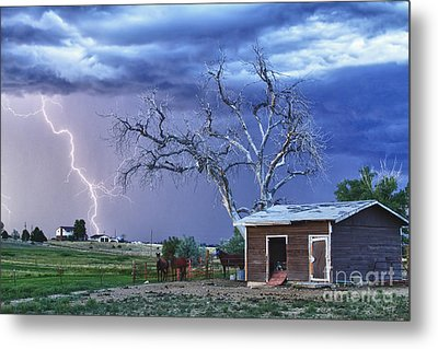 Country Horses Lightning Storm Ne Boulder County Co Hdr Metal Print by James BO  Insogna