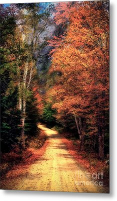 Country Road Metal Print by Brenda Giasson