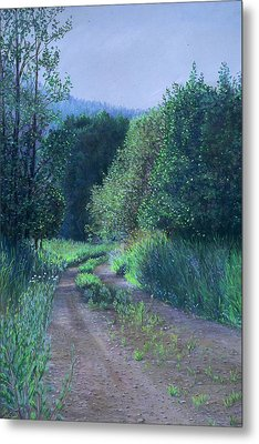Country Road Metal Print by Nick Payne