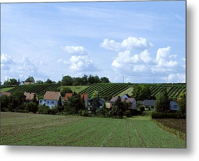 Countryside Metal Print by Haleh Mahbod