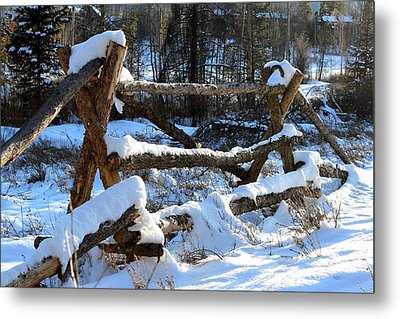 Covered In Snow Metal Print by Fiona Kennard