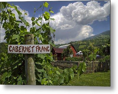 Crane Creek Vineyard Metal Print by Debra and Dave Vanderlaan