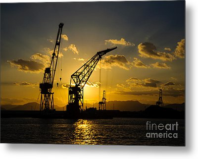Cranes In The Sunset Metal Print by David Hill