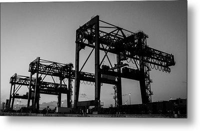 Cranes Metal Print by Julian Sula