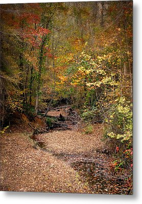 Creek Bed In Autumn - Fall Landscape Metal Print by Jai Johnson