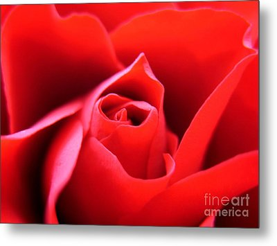 Crimson Metal Print by Patti Whitten