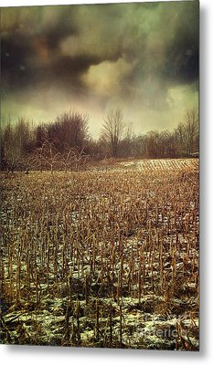 Crop Field In Early Winter After First Snow Metal Print by Sandra Cunningham