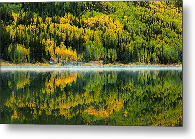Crystal's Colors Metal Print by Darren  White