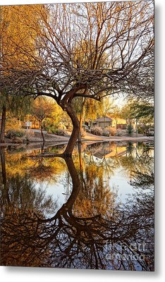 Curved Reflection Metal Print by Kerri Mortenson