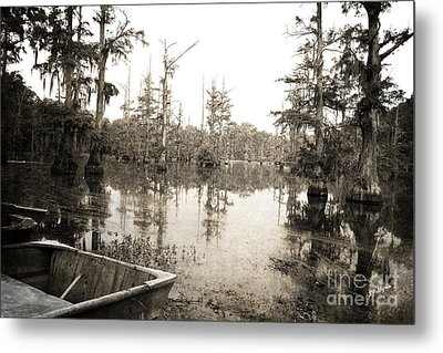 Cypress Swamp Metal Print by Scott Pellegrin