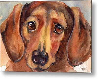 Dachshund Watercolor Metal Print by Maria's Watercolor