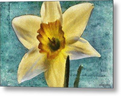 Daffodil Metal Print by Jeff Kolker