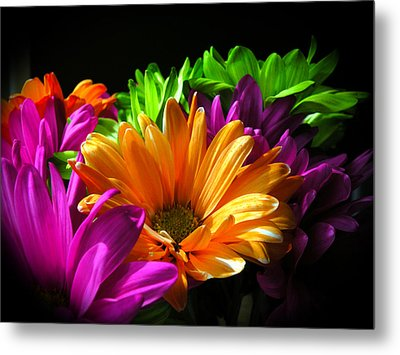 Daisy Delight Metal Print by David Quist