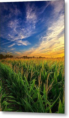 Dancing In The Rows Metal Print by Phil Koch