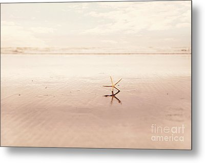 Dancing Starfish Beach Photograph Metal Print by Sylvia Cook
