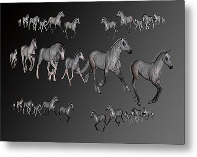 Dapples Metal Print by Betsy C Knapp