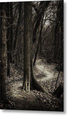 Dark Winding Path Metal Print by Scott Norris