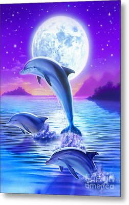 Day Of The Dolphin Metal Print by Robin Koni