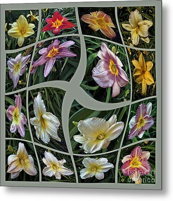 Daylily's Flying Away Collage Metal Print by ImagesAsArt Photos And Graphics
