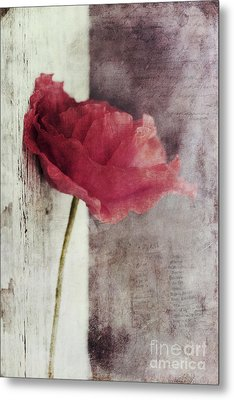 Decor Poppy Metal Print by Priska Wettstein