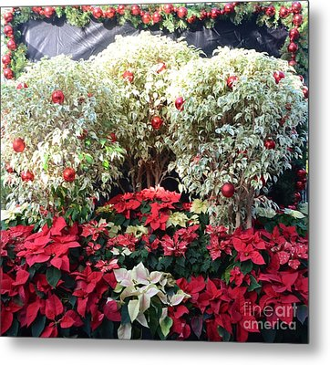 Decorated For Christmas Metal Print by Kathleen Struckle