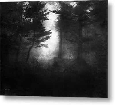 Deep In The Dark Woods Metal Print by Theresa Tahara