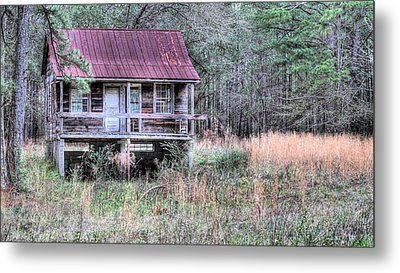 Deep In The Woods Metal Print by JC Findley